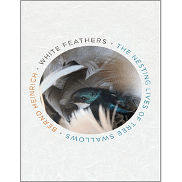 White Feathers: The Nesting Lives of Tree Swallows