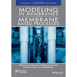 Modeling in Membranes and Membrane-Based Processes: Industrial Scale Separations