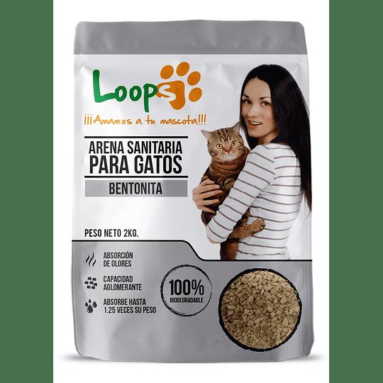 Arena Sanitaria para Gatos Loops Piedra (8 x 2 KG)