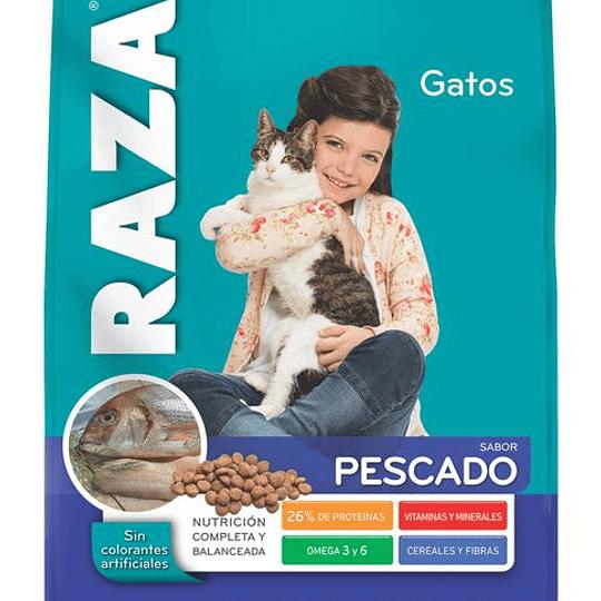 Raza Gatos Adultos 10 kg