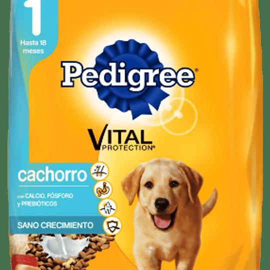 Pedigree Cachorro 21 Kg