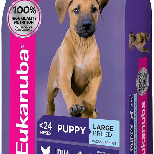 Eukanuba Large Breed Puppy 15 Kg