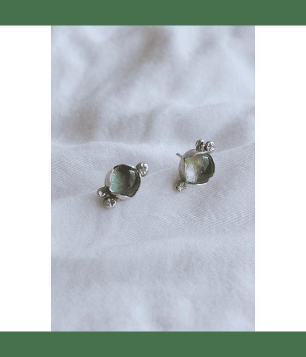 Aros Mini Brotes