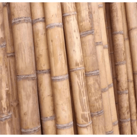 Bambú Guadua Natural - Dimensionado (AGOTADO HASTA NOVIEMBRE) - Image 2