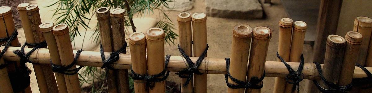 Bambús Importados