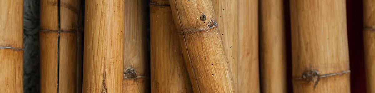 Tienda de Bambú