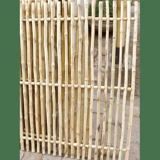 Panel Rígido con anillos Bambú Colihue (tipo rejilla) - Image 2