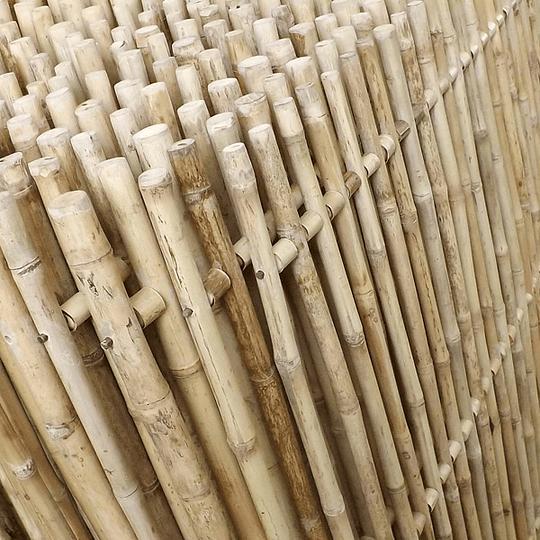 Panel Rígido con anillos Bambú Colihue (tipo rejilla) - Image 4
