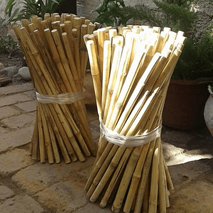 Tutor Cultivo Colihue sin seleccionar, 20 unid/paq