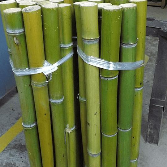 Bambú Moso Natural - Dimensionado - Image 1