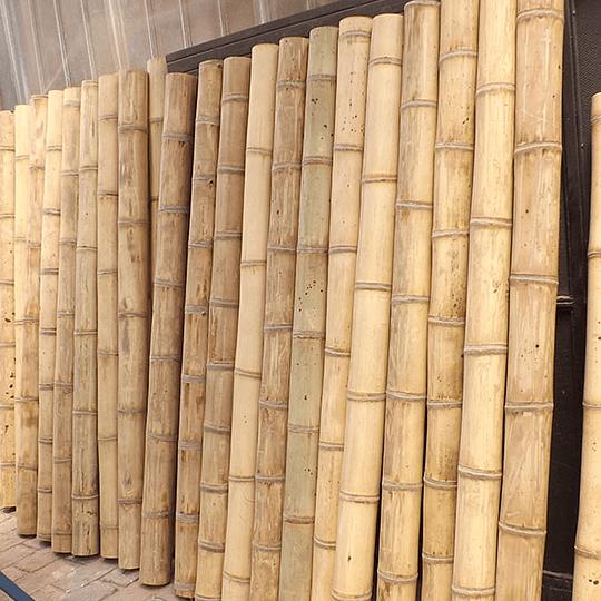 Bambú Asper dimensionado y preparado para decoración (AGOTADO) - Image 6