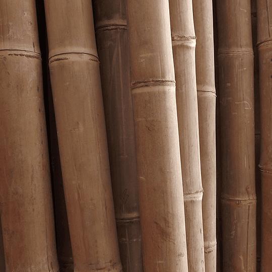 Bambú Asper Natural - Dimensionado - Image 2