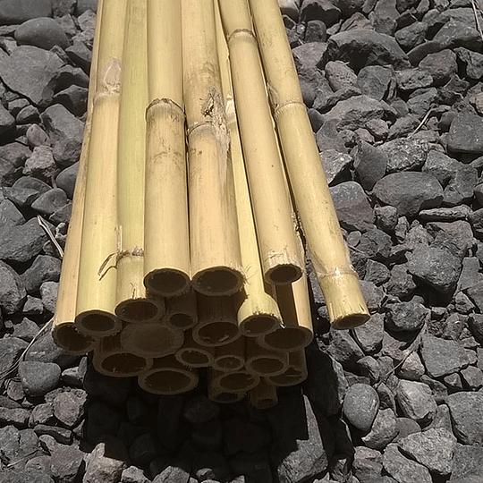 Bambú Carrizo Natural - Image 3