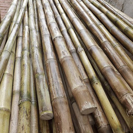 Bambú Colihue Seleccionado y pulido, 2,0 a 3,0 cm diámetro - Image 1