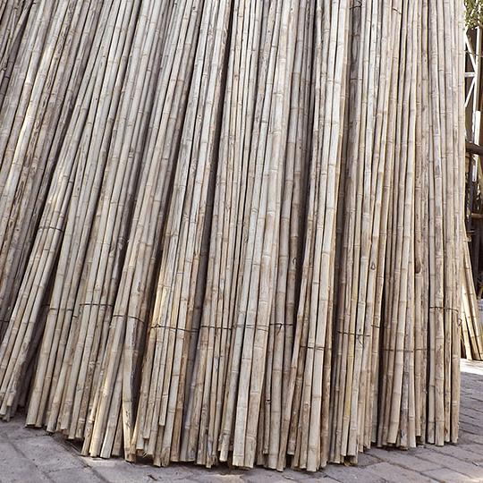Bambú Colihue Seleccionado y pulido, 2,0 a 3,0 cm diámetro - Image 2
