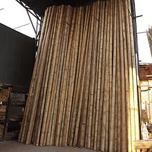Bambú Guadua de 6 mts