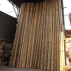 Bambú Guadua Natural - Dimensionado