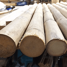 Bambú Colihue pulido dimensionado 3 cm