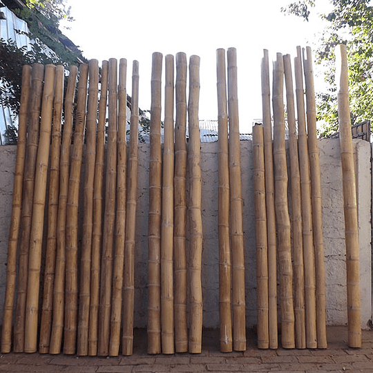 Bambú Guadua Dimensionada y Preparado para decoración (AGOTADA HASTA FINES OCTUBRE) - Image 12