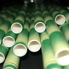 Bombillas de papel imitación bambú