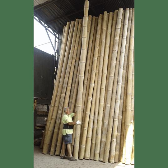 Bambú Asper Natural - Dimensionado - Image 1