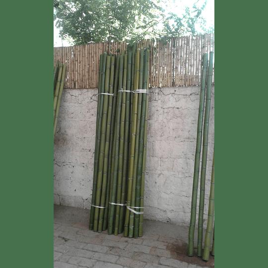 Bambú Moso Natural - Dimensionado - Image 4