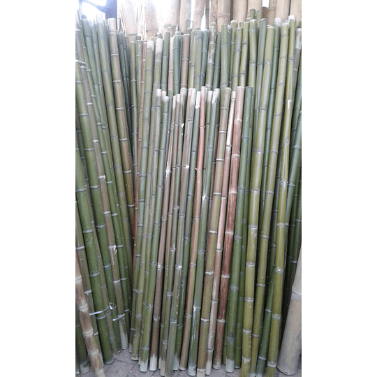 Bambú Moso Natural - Dimensionado - Image 5