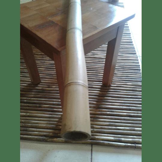 Bambú Aurea dimensionada y preparado para decoración (AGOTADO) - Image 6