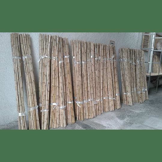 Bambú Colihue Seleccionado y pulido, 2,0 a 3,0 cm diámetro - Image 4
