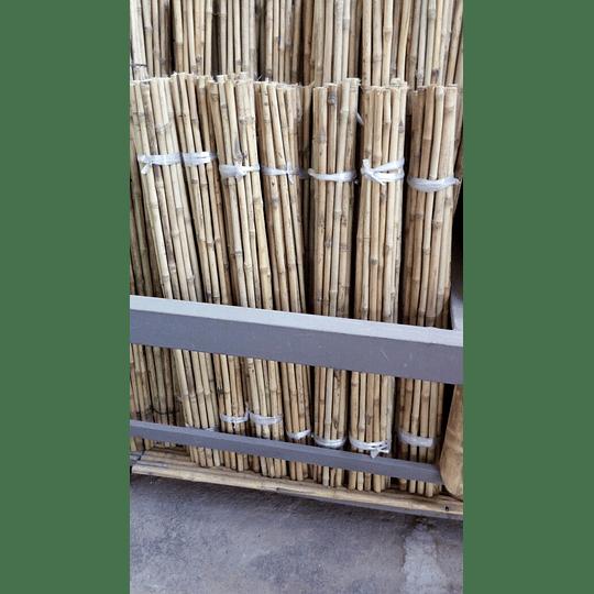 Bambú Colihue Seleccionado y pulido, 2,0 a 3,0 cm diámetro - Image 5