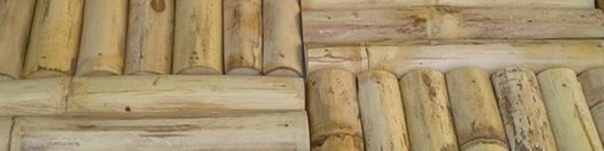 Bambú Nacional