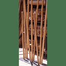 Bambú Aurea dimensionada y preparado para decoración