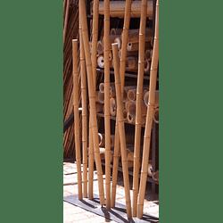 Bambú Aurea dimensionada y preparado para decoración (AGOTADO)