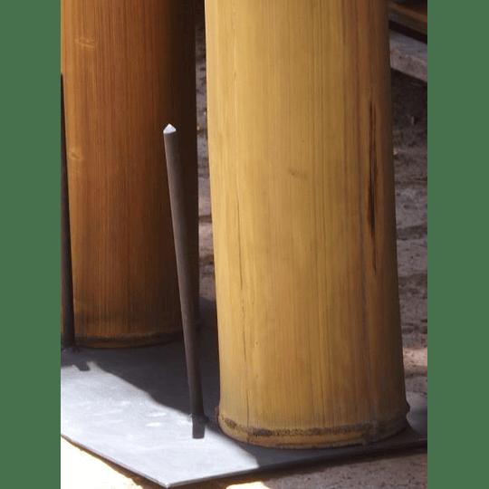 Bambú Asper dimensionado y preparado para decoración (AGOTADO) - Image 3
