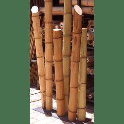 Bambú Guadua Dimensionada y Preparado para decoración (AGOTADA HASTA FINES OCTUBRE)