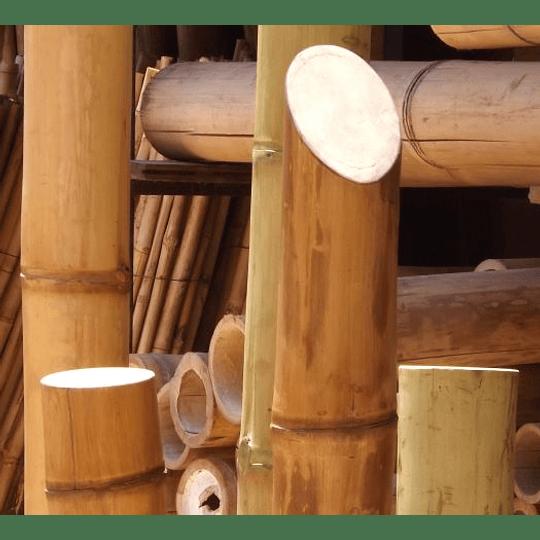 Bambú Guadua Dimensionada y Preparado para decoración - Image 2