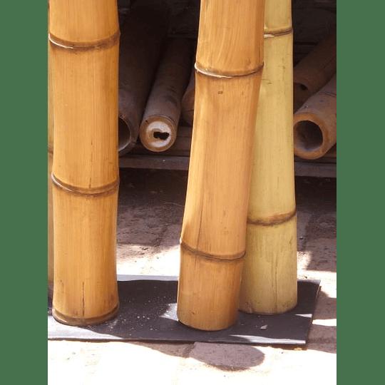 Bambú Guadua Dimensionada y Preparado para decoración - Image 6