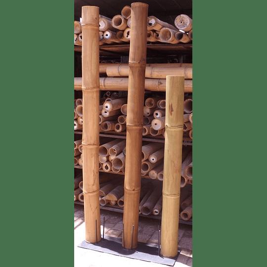 Bambú Guadua Dimensionada y Preparado para decoración (AGOTADA HASTA FINES OCTUBRE) - Image 8