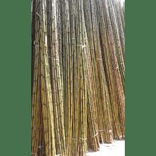 Bambú Colihue sin seleccionar, en bruto, largo 4 m.