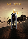 Arabians Tonka EDP 100 ml