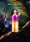 Sensual Instinct EDP 100 ml