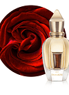 Damarose Parfum 50 ML