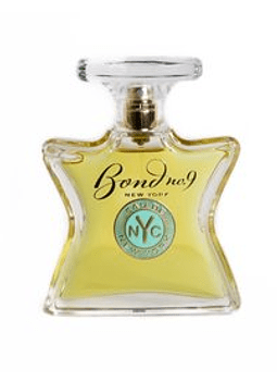 EAU DE NEW YORK EDP 100 ML