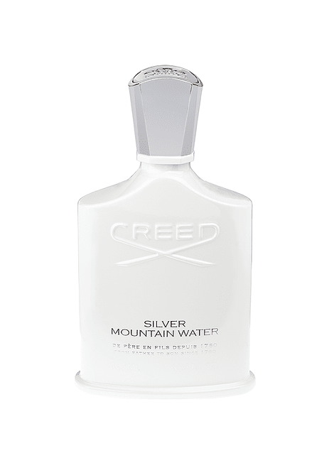 Silver Mountain Water EDP 100 ML