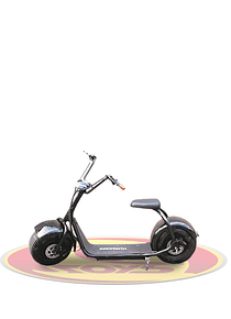 Scooterin