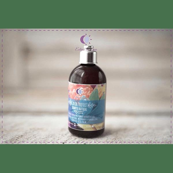 Shampoo - Color Protect