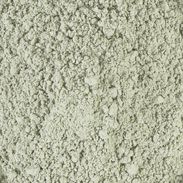 Nopal en polvo orgánico