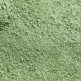 Moringa orgánica