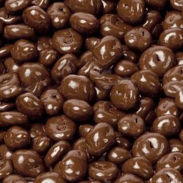 Chocolate con arándano s/a