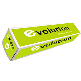 Papel Plotter 80gr 625mmX50mts Evolution (Pack 4 Rolos)